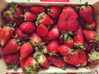 φράουλες σε λευκό πλαστικό δοχείο