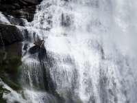 water valt in time-lapse-fotografie