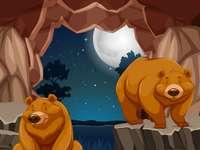 A medvék odúja