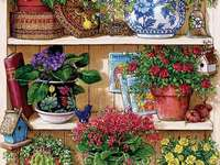 puzzle- potted flowers