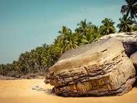 кафява скална формация край зелена палма през деня