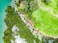 aerial view of green grass field beside body of water