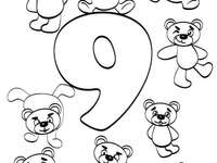 Číslo a číslo 9