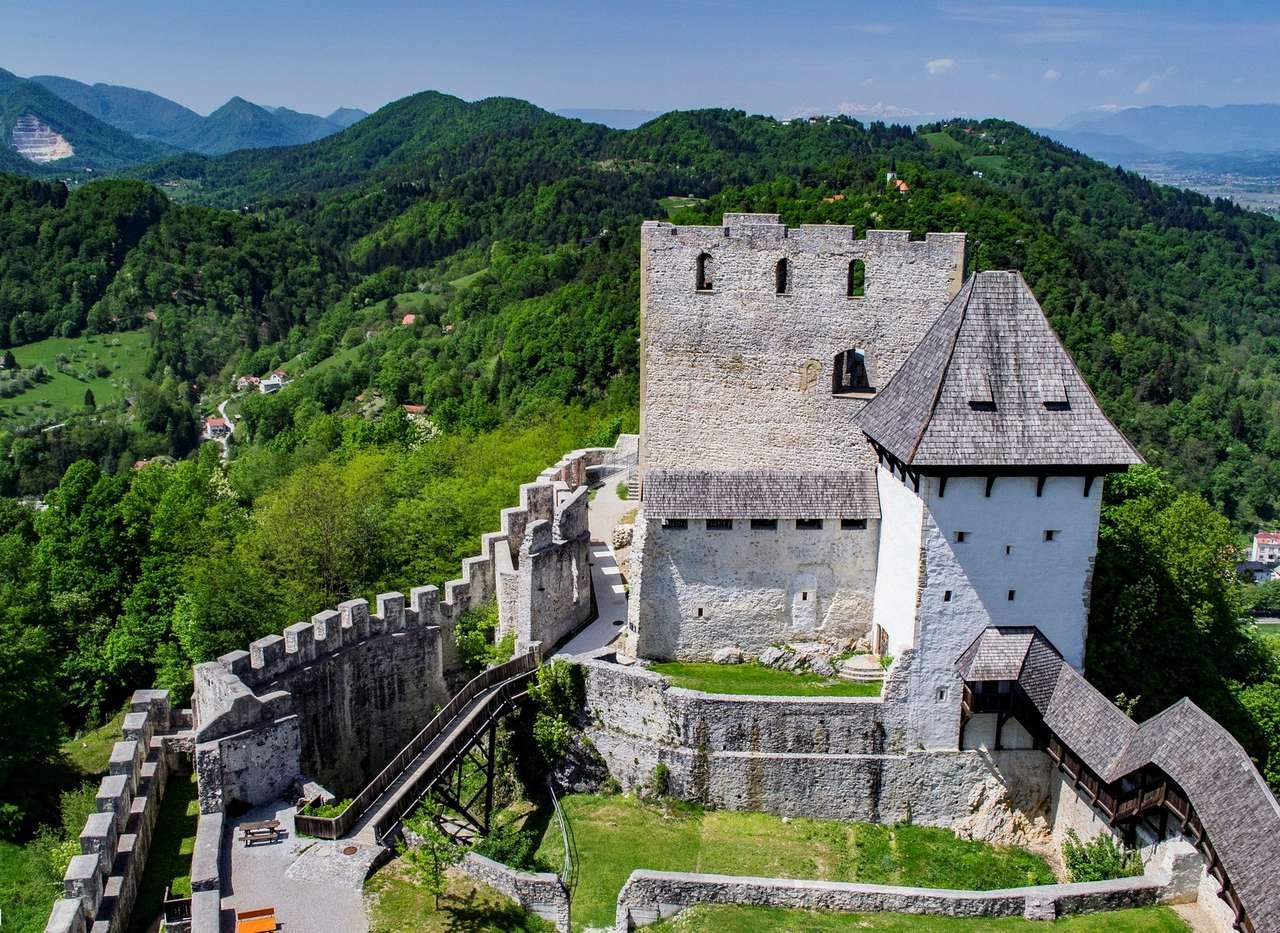 Slott nära Celje i Slovenien (15×11)