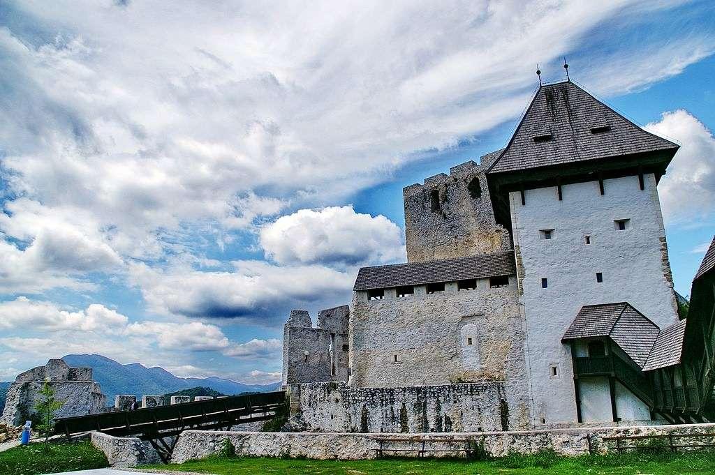 Slott nära Celje i Slovenien (16×11)