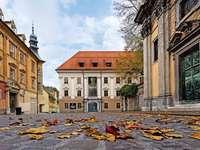 Ljubljana stadsmuseum Slovenien