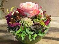 Красива декоративна купа с растения и роза