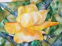Pittura rosa cespuglio giallo