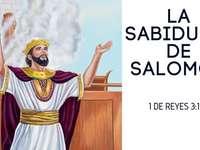 Šalomounova moudrost