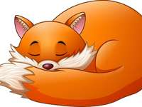 La volpe assonnata
