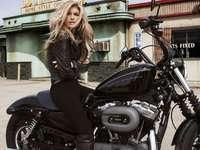 Motor- Harley-Davidson