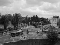fotografie în tonuri de gri a mașinilor pe drum lângă copaci