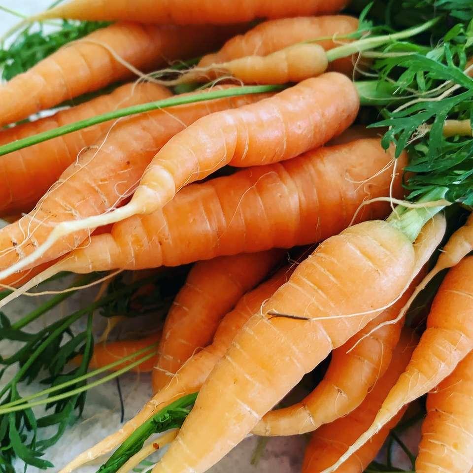 orange morötter på grönt gräs under dagtid - # färsk # morot # morot # duffridgefarms # gäng morötter (18×18)