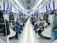 kék és fehér buszüléseken ülő emberek