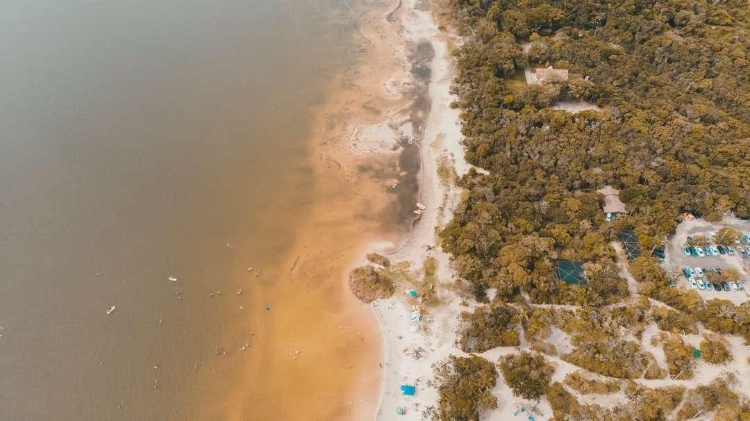 Vista aérea del cuerpo de agua durante el día - Florianópolis, Estado de Santa Catarina, Brasil (17×10)