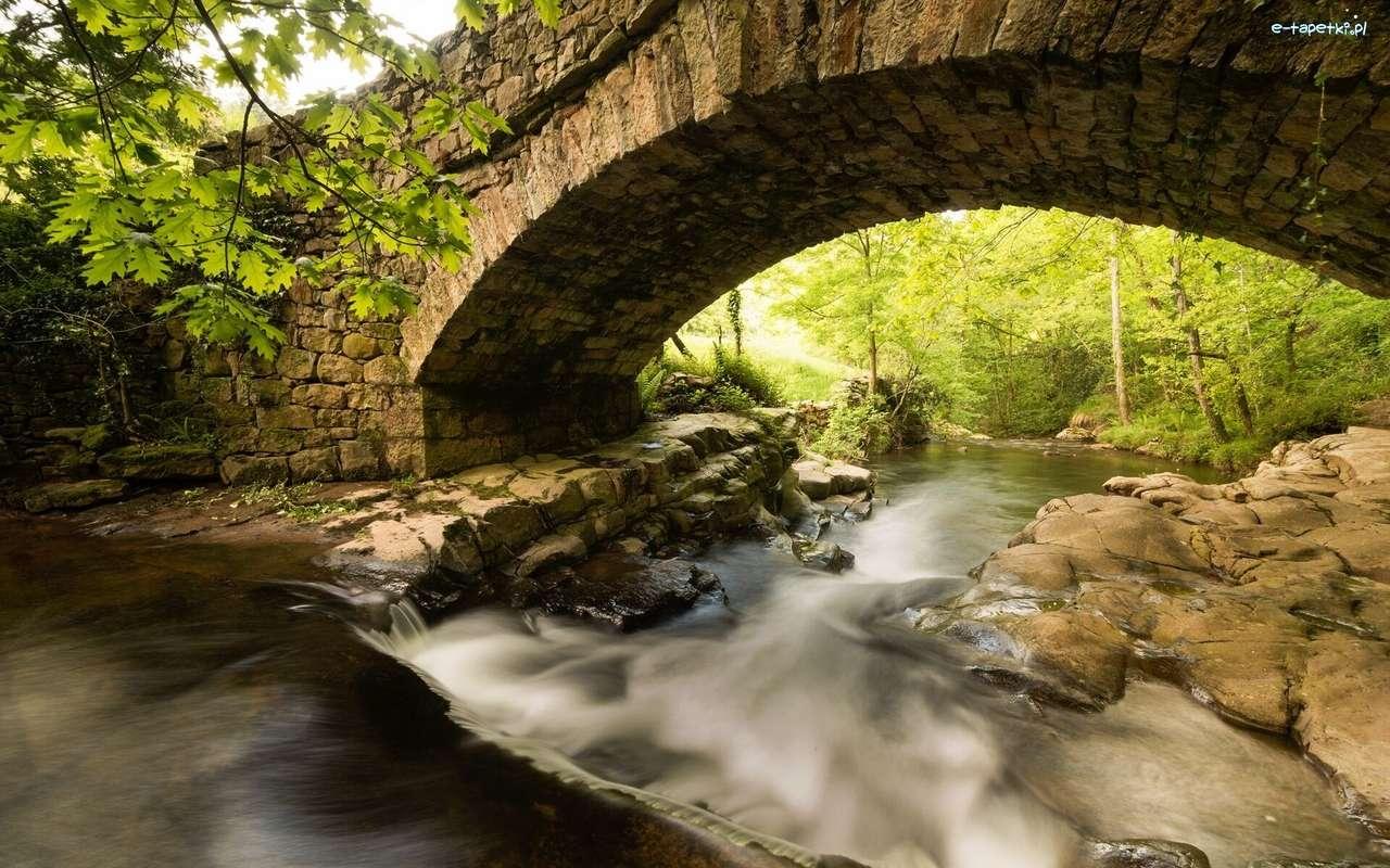 puente, río - m (14×9)