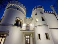Palác Tiele-Winckler v Bytomu