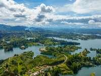 vista aérea de árvores verdes e rio durante o dia