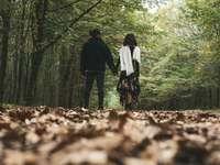man och kvinna som går på skogen under dagtid