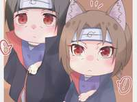 2 mini-Itachi-kittens