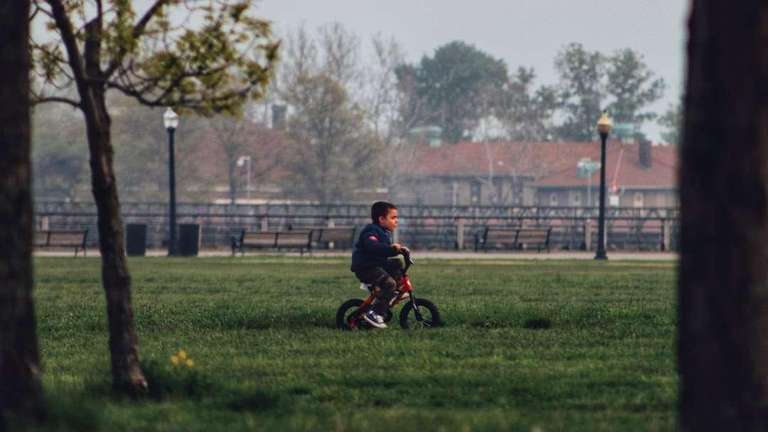 Niño con camisa negra montando en bicicleta en el campo de hierba verde - niño con camisa negra montando en bicicleta en el campo de hierba verde durante el día (5×3)