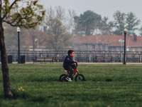 boy in black shirt riding on bicycle on green grass field