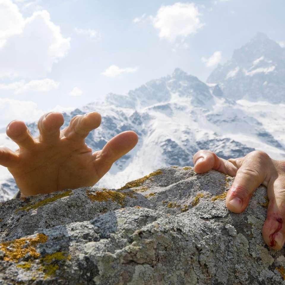 Perseverancia - La perseverancia que anima la vida (11×11)