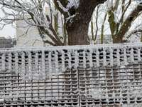 Rete fissa congelata in Zamora-Spagna.