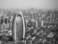 foto em tons de cinza de edifícios da cidade