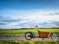 żółty i czarny rower na zielonym polu trawy