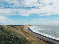 zielone pole trawy w pobliżu morza pod błękitnym niebem w ciągu dnia