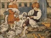 děti krmí husy a housátka