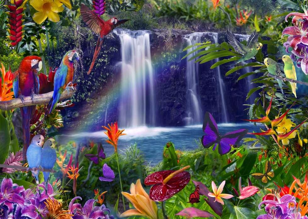 fabulously - waterfall, parrots, butterflies - m (12×9)