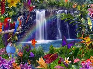 bajecznie- wodospad, papugi, motyle