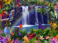 fabulously - waterfall, parrots, butterflies