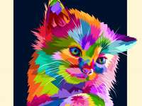 pop art macska