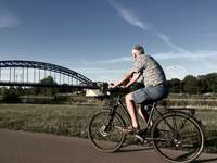 man in gray and white striped shirt riding black bicycle