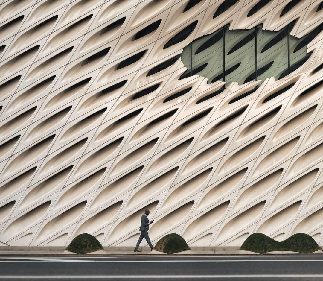 Mann im schwarzen Hemd, das auf grünem Grasfeld geht - Mann im schwarzen Hemd, das tagsüber auf grünem Grasfeld geht. Mann geht vor einem gut gestalteten Gebäude. . Walt Disney Konzerthalle, South Grand Avenue, Los Angeles, Kalifornien, USA (19×17)