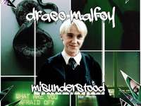 Draco Lucius Malfoy