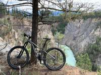 black and gray mountain bike near brown bare tree