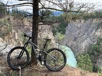черно и сиво планинско колело близо до кафяво голо дърво