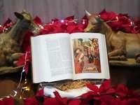 stránka bílé knihy na hnědý dřevěný stůl