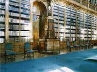 Библиотека на Страхов