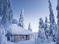 En het is winter ...