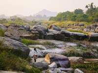 Rocas grises en el campo de hierba verde durante el día