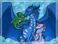 Anemone, Auklet și Queen Coral