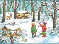 Zvířata a ptáci v zimě