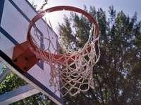 weißer und roter Basketballkorb