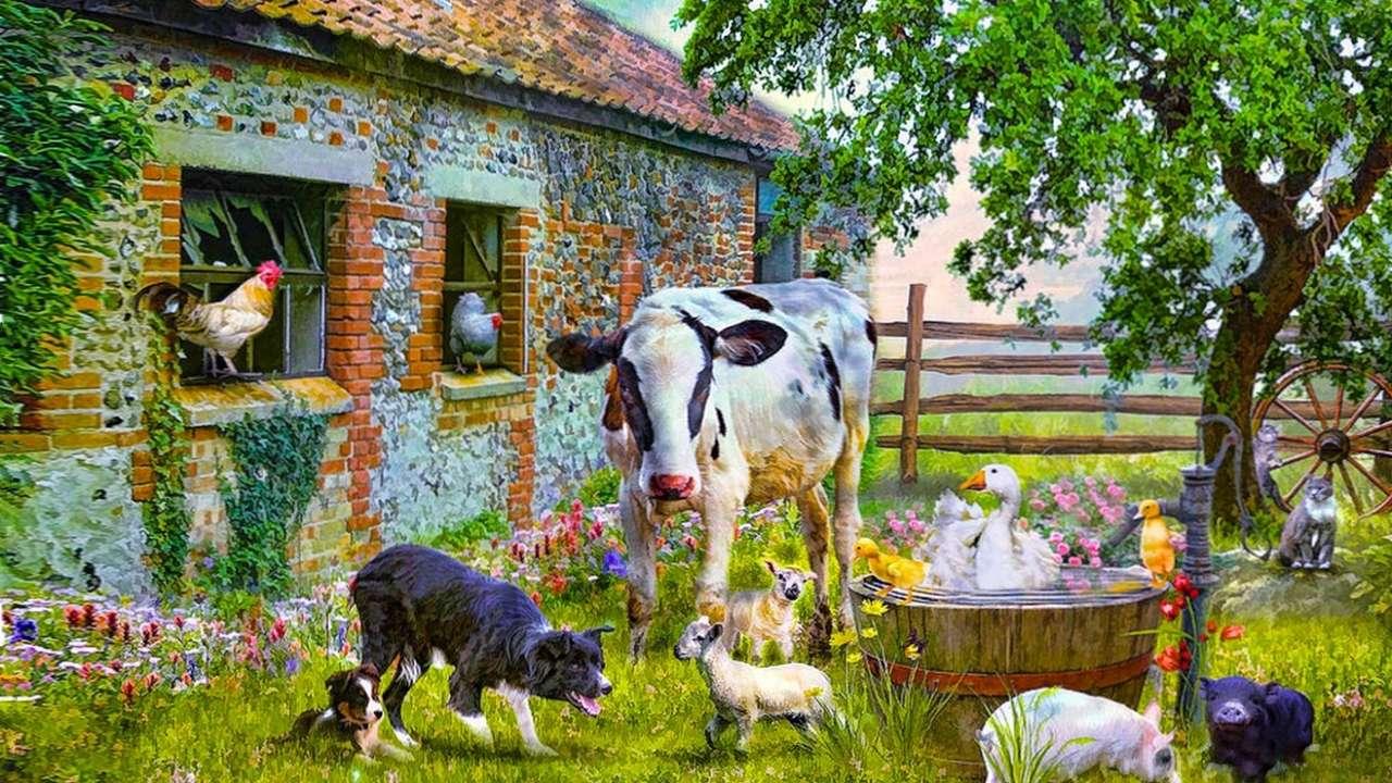 Huisdieren - Dierlijke zomerboerderij (12×7)