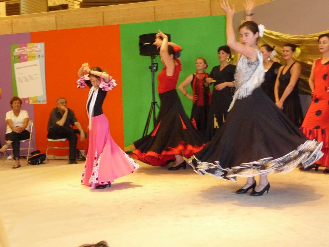 Španělský tanec - Flamenco na veletrhu v Bordeaux (12×9)